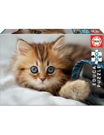 Puzzle 200 Peças - Gatito