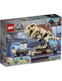Exposição de Fóssil do Dinossauro T.rex