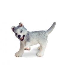 Cachorro Husky a Brincar